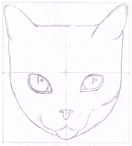 draw  cat  cool funny