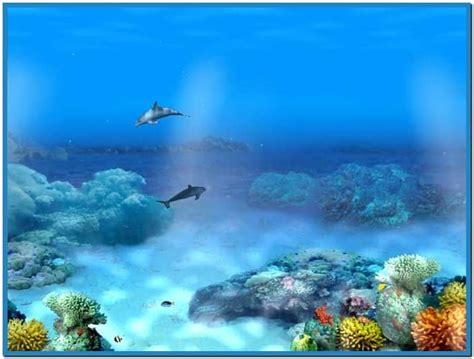 Dolphins 3d Screensaver And Animated Wallpaper - dolphins 3d screensaver and animated wallpaper 1 0 build 2