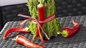 Herbstdeko Selbst Gemacht : herbstdeko selber machen tolle ideen mit obst gem se pflanzen ~ Orissabook.com Haus und Dekorationen