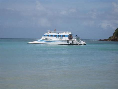 Catamaran Rides In Puerto Rico by Access To The Beach Picture Of East Island Excursions