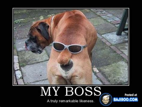 Funny Boss Memes - you re the only boss i ve ever had that hasn t driven me crazy happy boss day 26 posters