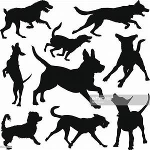 Dog Silhouettes Vector Art | Getty Images