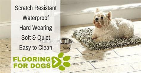 Best flooring for pets / Best4flooring Blog   Best4flooring UK