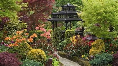 Zen Garden Widescreen