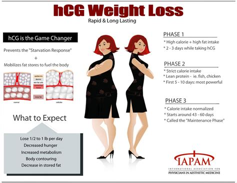 This Is An Infographic Describing The Benefits Of Hcg In