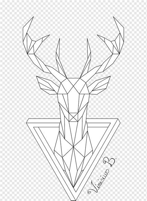deer illustration deer geometry drawing  art