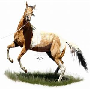 The gallery for --> Rearing Horse Painting