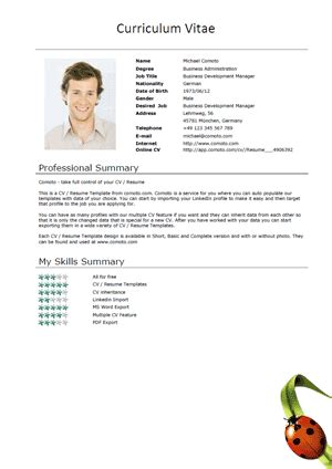 Ladybug Resume by Comoto Resume Template Gallery