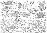 Aquarium Coloring Fish Underwater Octopus Anchor Corals Acquario Bottle Anker Coralli Ancora Mondo Kleuring Onderwaterwereld Ahtapot Marin Shells Stones Farbton sketch template