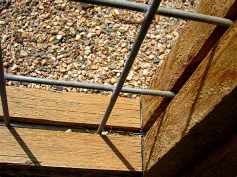 Best 25+ Wire Fence Panels Ideas On Pinterest