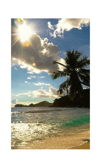 Gifs Playa Beaches Nature Google Giphy Sol