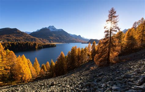 Wallpaper Autumn Trees Mountains Lake Switzerland