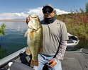 Diamond Valley Lake Fish Report from Guide Todd Kline
