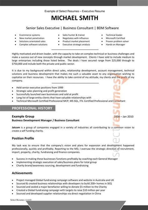 Resume Writing Business Software by Resume Writing Services By Professional And Specialist