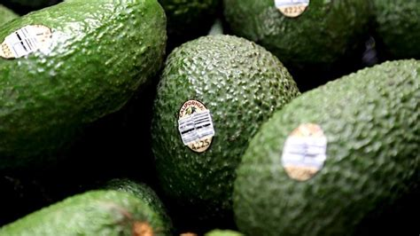 avocados grapevine spanning grove wide november special posted