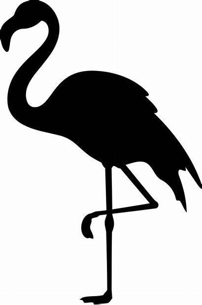 Flamingo Clipart Svg Bird Decal Clipartly Tropical