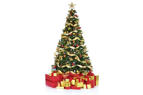 recycle christmas trees at yard waste sites for free