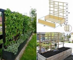 Welche Pflanzen Eignen Sich Als Sichtschutz : mobiler sichtschutz f r terrasse blumenkasten mit rankgitter garten anlegen pinterest ~ Eleganceandgraceweddings.com Haus und Dekorationen