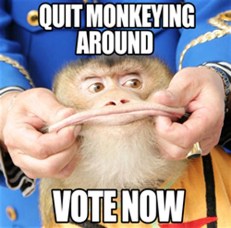 Meme Vote - village voice web awards 2012