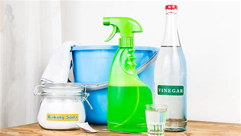 spring cleaning maintenance   appliances