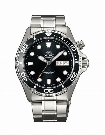 Ray Orient Mako Automatic Dive Watches Comparison