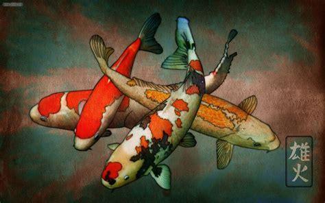 Koi Fish Wallpapers