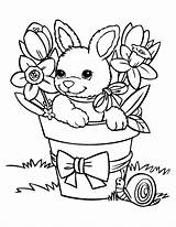 Rabbit Coloring Bunnies Pages Bunny Printable Children Funny Rabbits Cartoon Easter Adult Babies Cartoons Colorin Books Justcolor sketch template