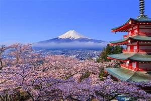 When, Is, The, Best, Time, For, You, To, Visit, Japan
