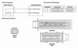 Kia Rio  Circuit Diagram - Crankshaft Position Sensor  Ckps  - Engine Control System