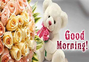 Good Morning Gifs Download for WhatsApp, Facebook - GifterGo