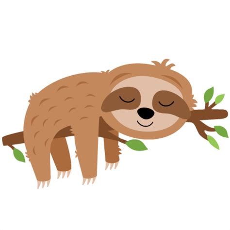 high quality sloth clipart tiny transparent png