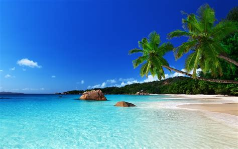 tropical island wallpapers wallpapersafari