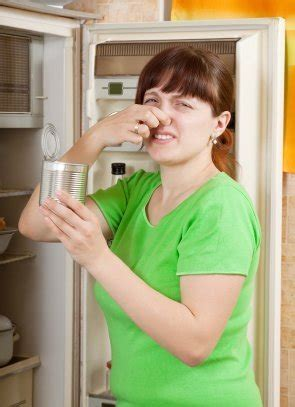 removing spoiled food odors  refrigerator thriftyfun