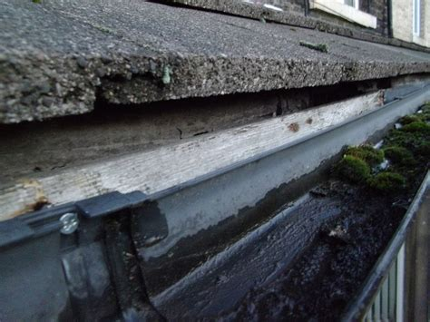 replace gutter  install drip edge flashing roofing