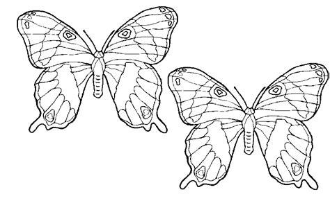Https Wwwleukvoorkidsnl Kleurplaten by Kleurplaat Een Vlinder Ajilbabcom Portal Picture To