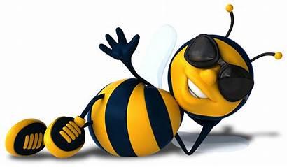 Bee Clipart Buzz Clip Bees Honey Summer