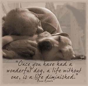 birthday quotes for dog lovers