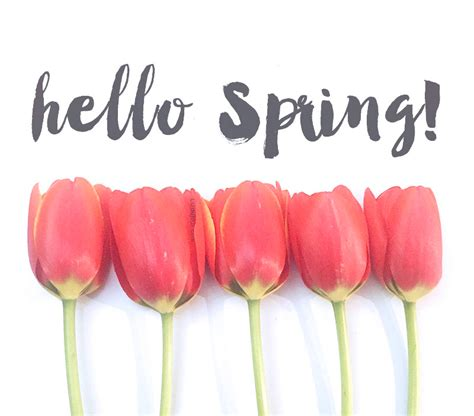 hello spring time for updates and some instagram