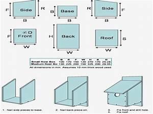 Simple Wood Bird House Plans How To Build A Blue Jay