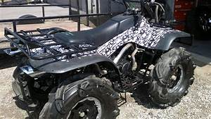 Arctic Cat 300 4x4  Pics  Specs And List Of Seriess By