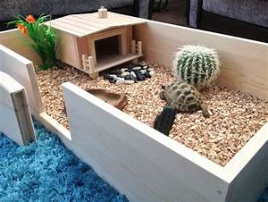 How To Set Up A Tortoise Table