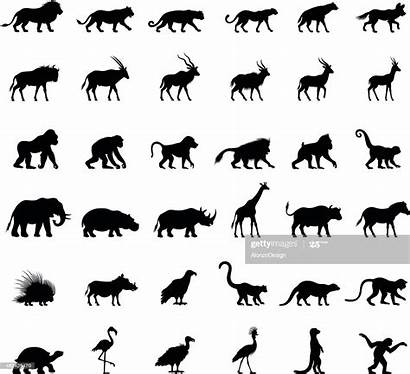African Animal Silhouettes Vector Animals Monkey Silhouette