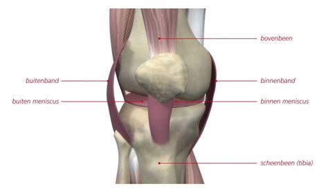 Kraakbeen operatie knie
