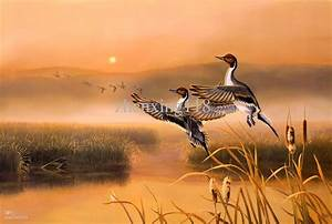 Beautiful Migratory Birds The Modern Art Of Decorative ...