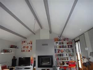 Sos deco sejour avec plafond haut for Peindre des poutres au plafond 4 sos deco sejour avec plafond haut