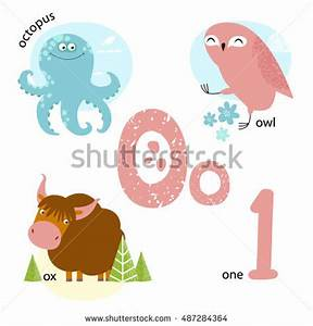 Vector illustration teaching children english alphabet for Animals with the letter o in their name