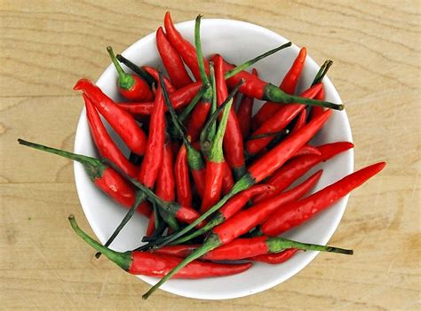 thai chilies the facts about thai bird s eye chilies