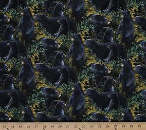 Number Chart For Kids Cotton Black Bears Animals Scenic Wildlife Cotton Fabric