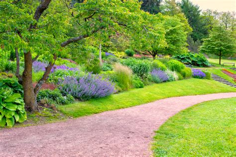 Passende Pflanzen Zu Lavendel