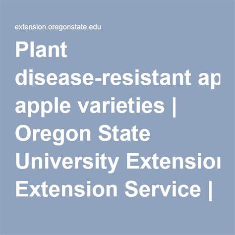 Plant disease-resistant apple varieties | Oregon State ...